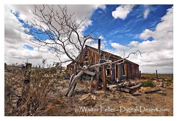 Cima ghost town, Mojave Preserve, California Mojave Desert