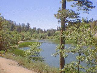 Jackson lake angeles national forest big pines for Lake fishing near los angeles