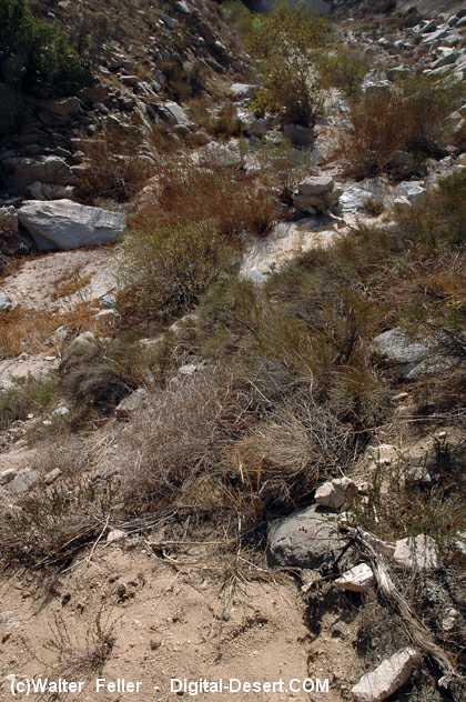 History of the Cajon Pass