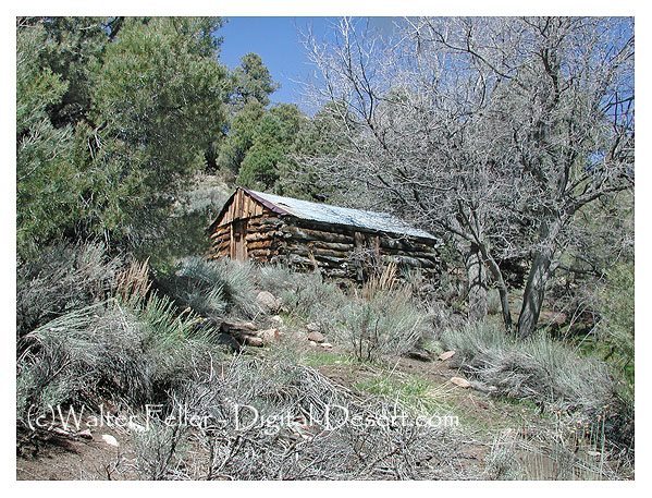 Hunter cabin death valley national park for Cabins near hunter mountain